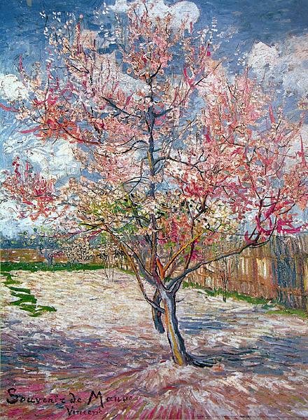 🤩 Souvenir de Mauve - Vincent Van Gogh Póster, Lámina | Compra en ...