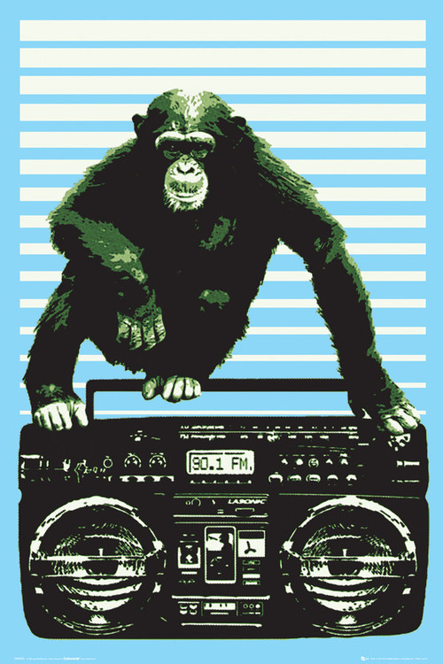 Poster Steez - boombox and monkey