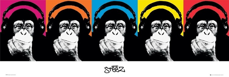 Poster Steez - monkey