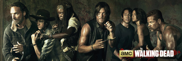 Póster The Walking Dead - Season 5