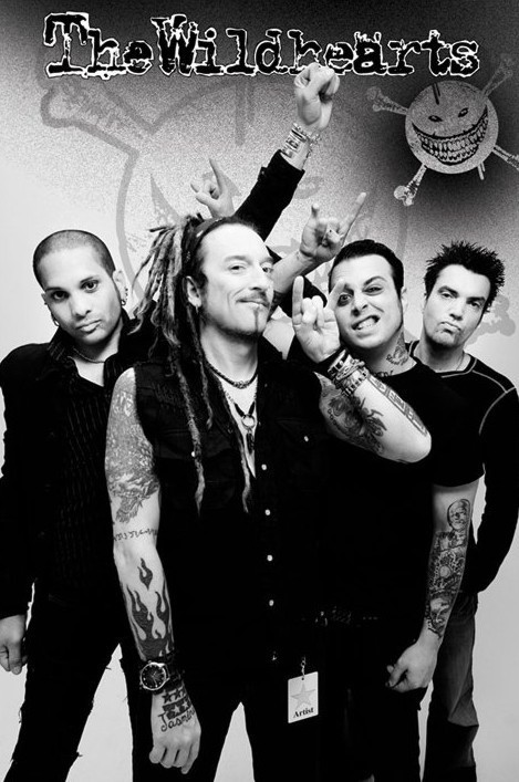Póster  the Wildhearts - group