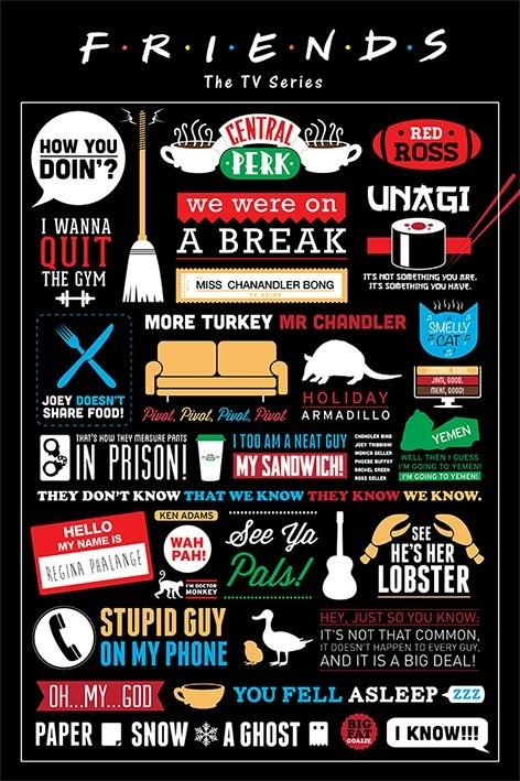 Poster VÄNNER - FRIENDS - infographic