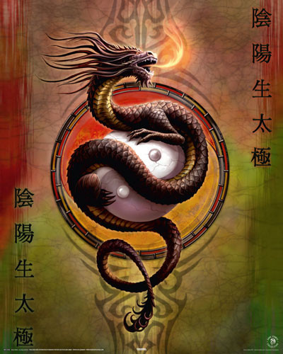 ANNE STOKES - yin yang protect Poster
