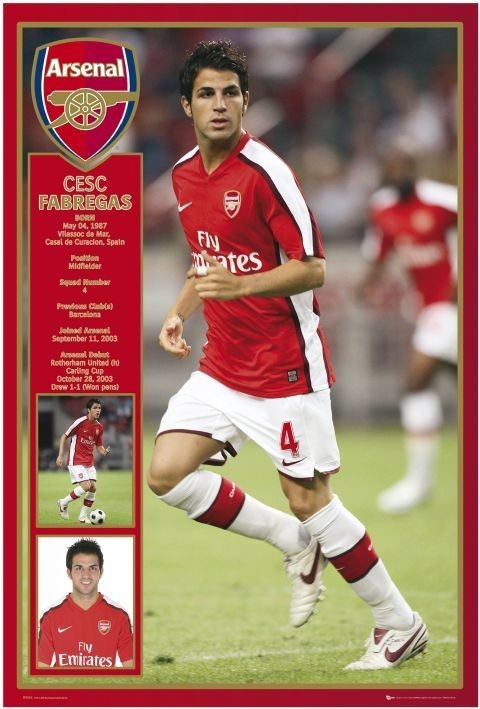 Arsenal - Fabregas 08/09 Poster