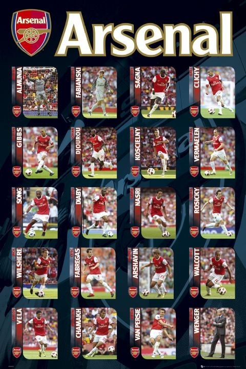 Arsenal - squad profiles 2010/2011 Poster