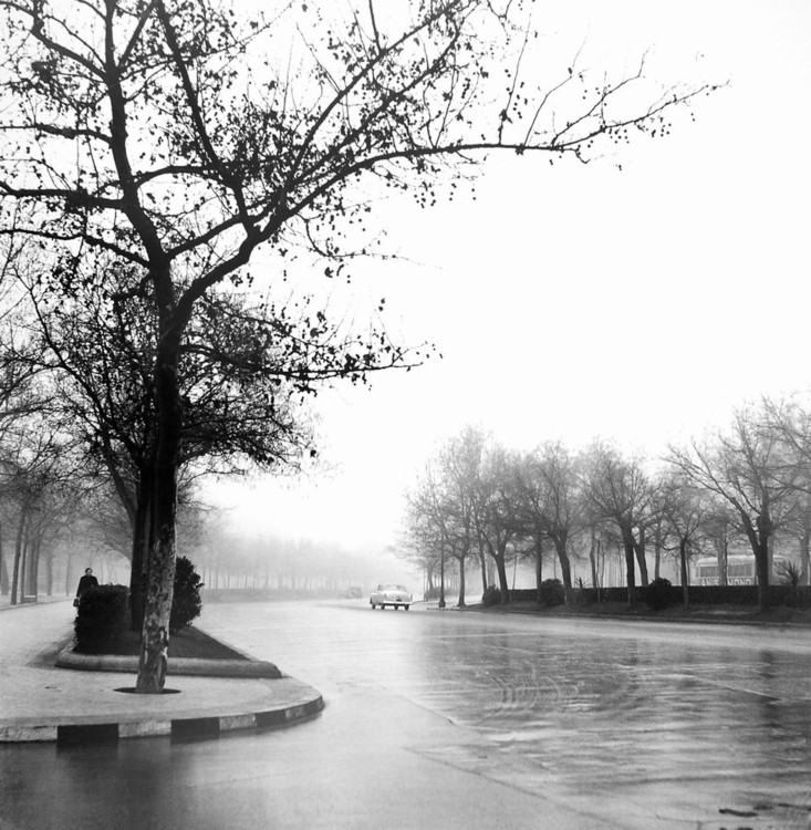 Castellana Avenue,Madrid 1953 Reproducere