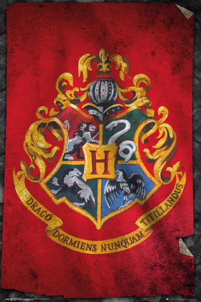 Harry Potter - Hogwarts Flag Poster
