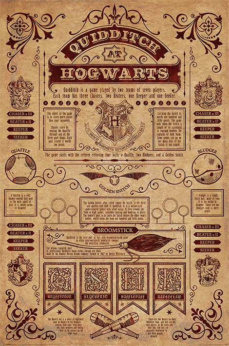Poster Harry Potter - Quidditch At Hogwarts