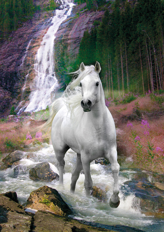 Horse - Waterfall, Bob Langrish Poster