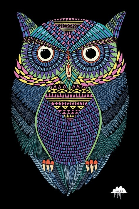 Mulga - Michael the Magical Owl Poster