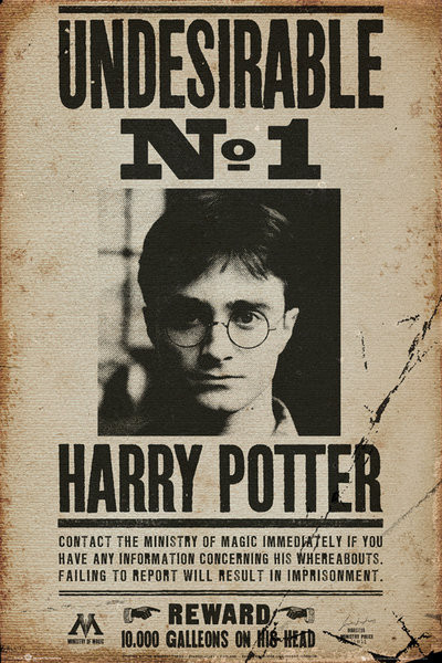 Poster HARRY POTTER - Undesirable n1
