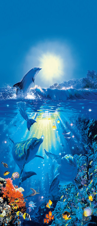 DOLPHIN IN THE SUN - christian riese Poster Mural XXL