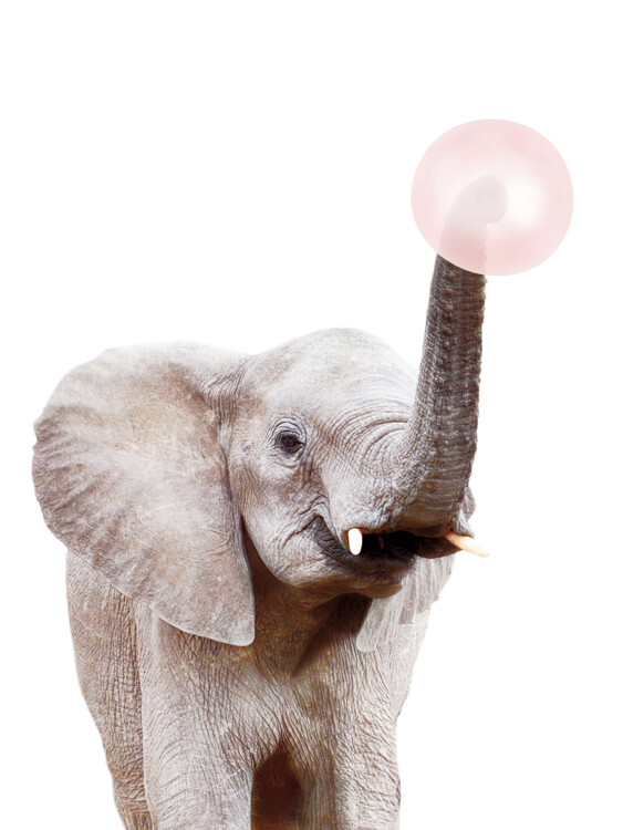 Elephant with bubble gum Poster Mural XXL