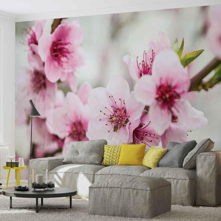 fleurs de cerisier poster mural papier peint acheter le sur. Black Bedroom Furniture Sets. Home Design Ideas