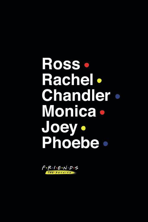 Friends - The Reunion Poster Mural XXL