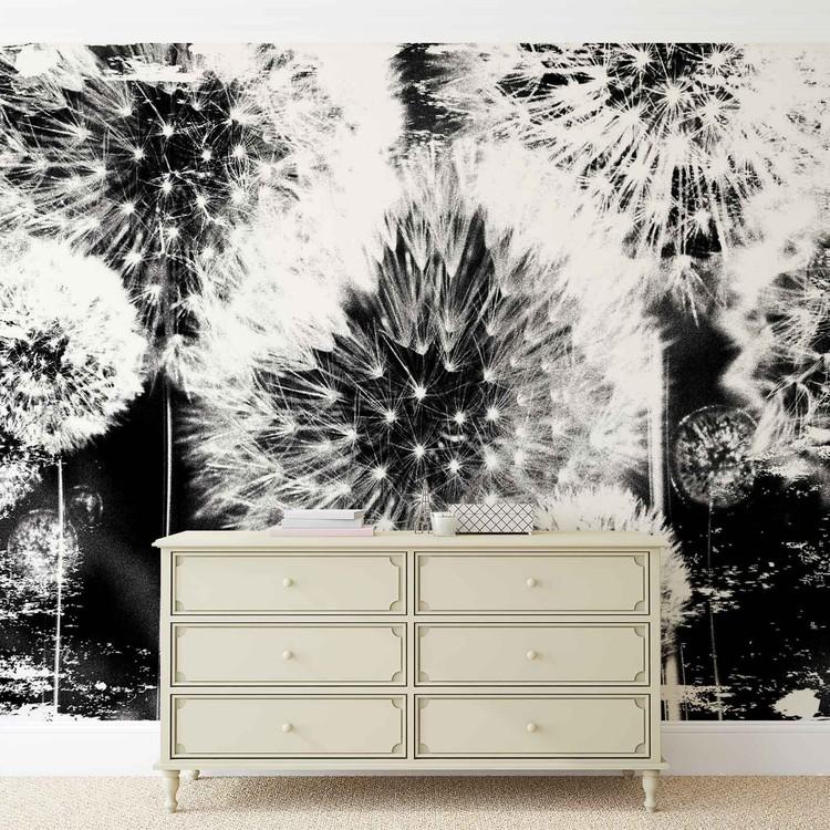 pissenlit noir et blanc poster mural papier peint acheter le sur. Black Bedroom Furniture Sets. Home Design Ideas