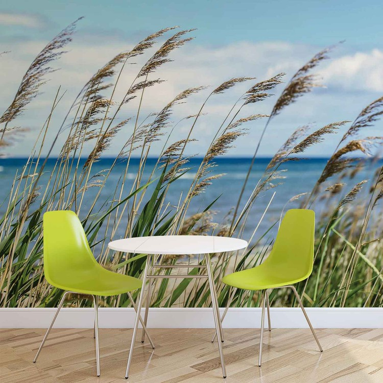 plage mer sable nature poster mural papier peint acheter le sur. Black Bedroom Furniture Sets. Home Design Ideas