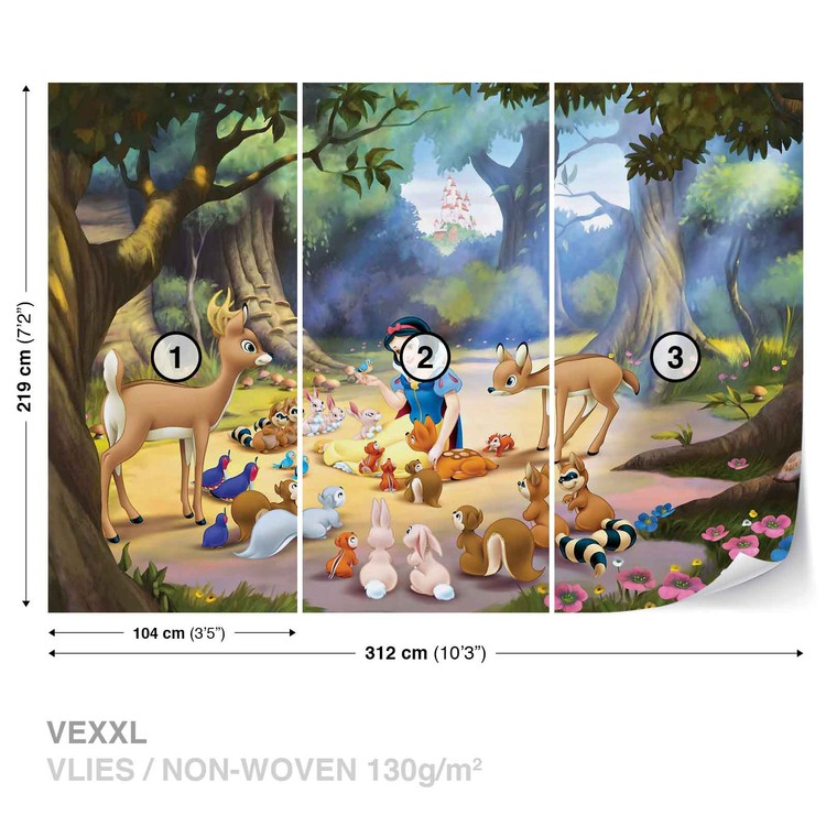 Princesses Disney Blanche Neige Poster Mural XXL
