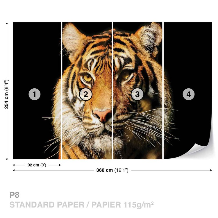 tigre poster mural papier peint acheter le sur. Black Bedroom Furniture Sets. Home Design Ideas
