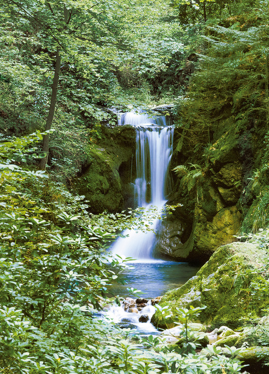 WATERFALL IN SPRING Poster Mural XXL