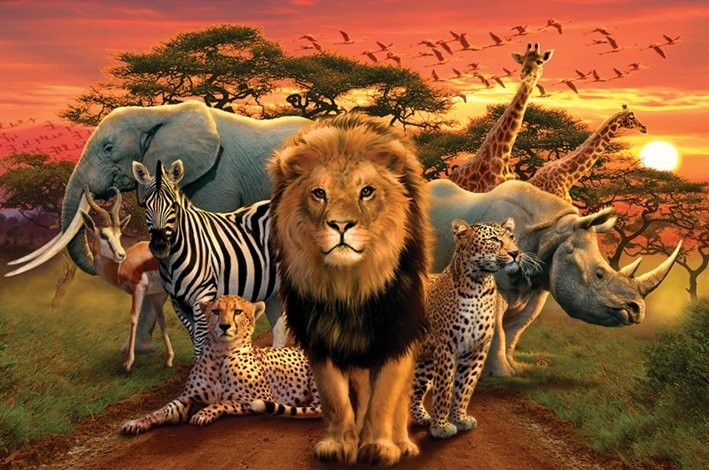 Poster African kingdom