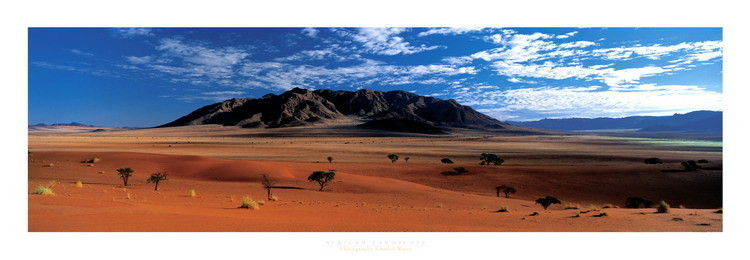 Poster African Landscape - Namibie