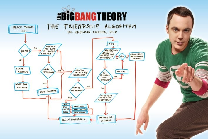 Poster BIG BANG THEORY - friendship