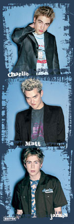 Busted - portraits Poster