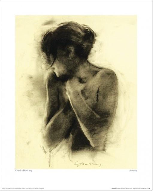 Konsttryck Charlie Mackesy - Antonia