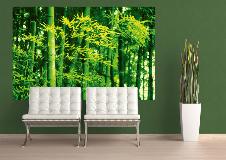 DAVE BRÜLLMANN - bamboo in spring Poster