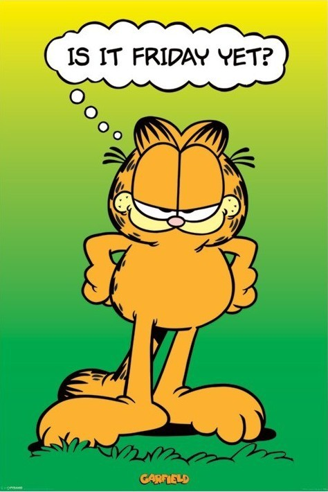 Poster GARFIELD - is it friday yet ?