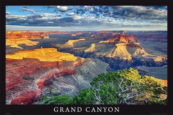 Poster Grand Canyon - arizona / usa