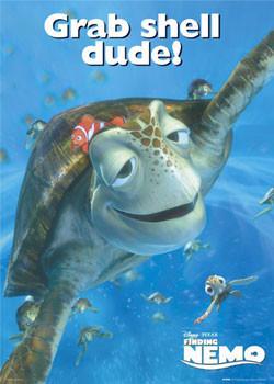 Poster HLEDÁ SE NEMO – korytnačka