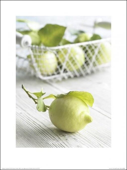 Howard Shooter - Lemons Kunstdruck