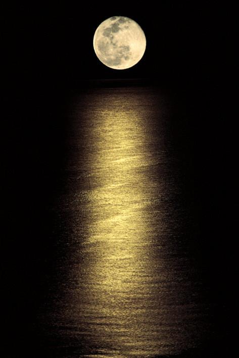 Poster Moonlight ocean