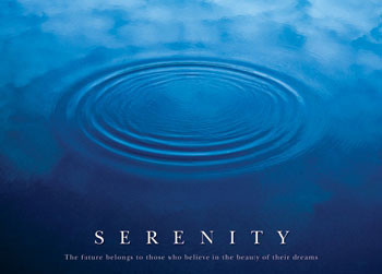Poster Serenity - the future ...