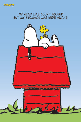 Poster SNOOPY & WOODSTOCK