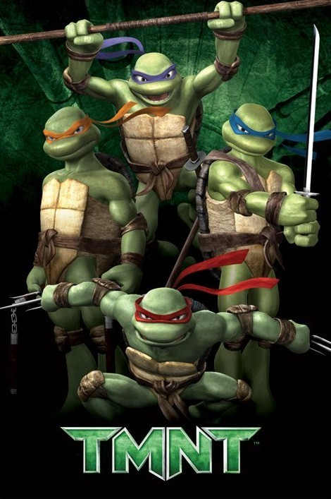 Poster TURTLES - green