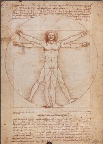 Vitruvian Man Kunstdruck
