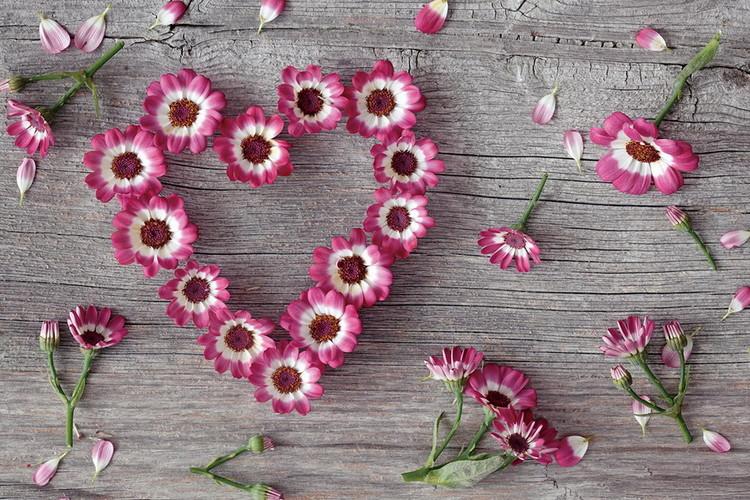 Pink Heart made of Flowers Print på glas