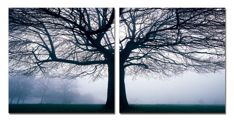 Quadro Silhouette of tree in fog