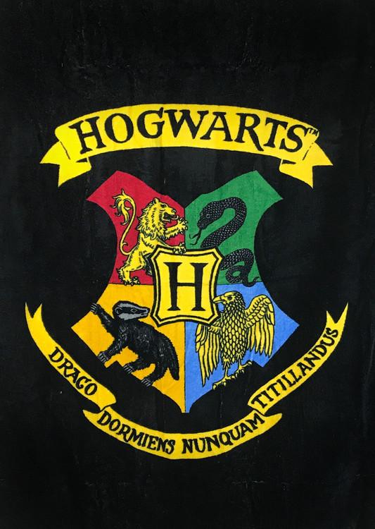 Ručnik Harry Potter - Hogwarts
