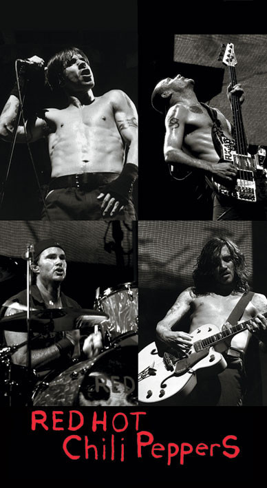 Samolepka RED HOT CHILI PEPPERS - live