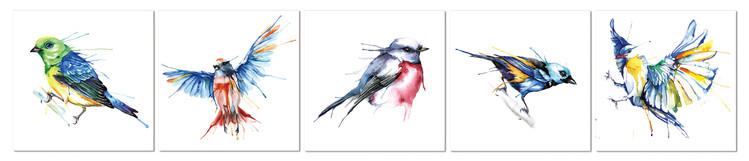 Colored birds Schilderij