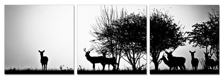 Forest Life - Silhouettes Schilderij