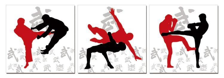 Sport - Kickbox Schilderij