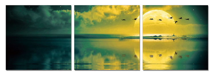 Sun welcoming - birds Schilderij