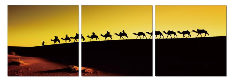 Camel caravan on the horizon Slika