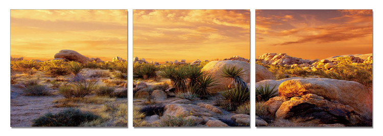Orange Desert Slika