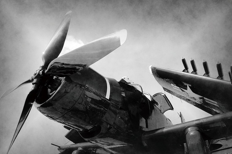 Plane - Black and White Screw Staklena slika